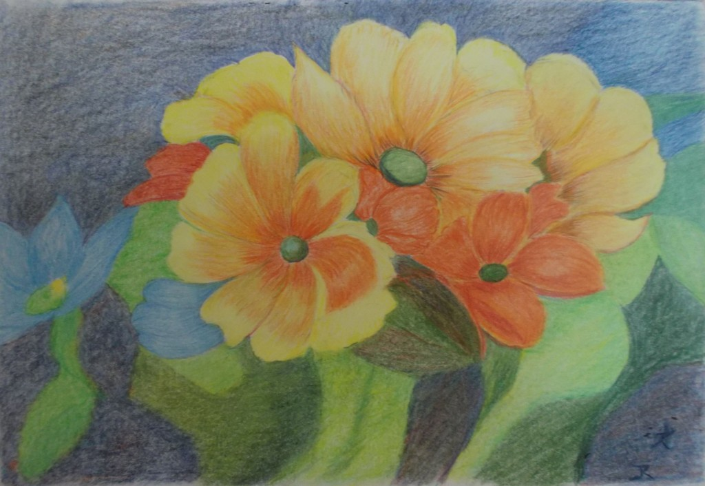 Kleurpotlood op papier, 18 x 26 cm