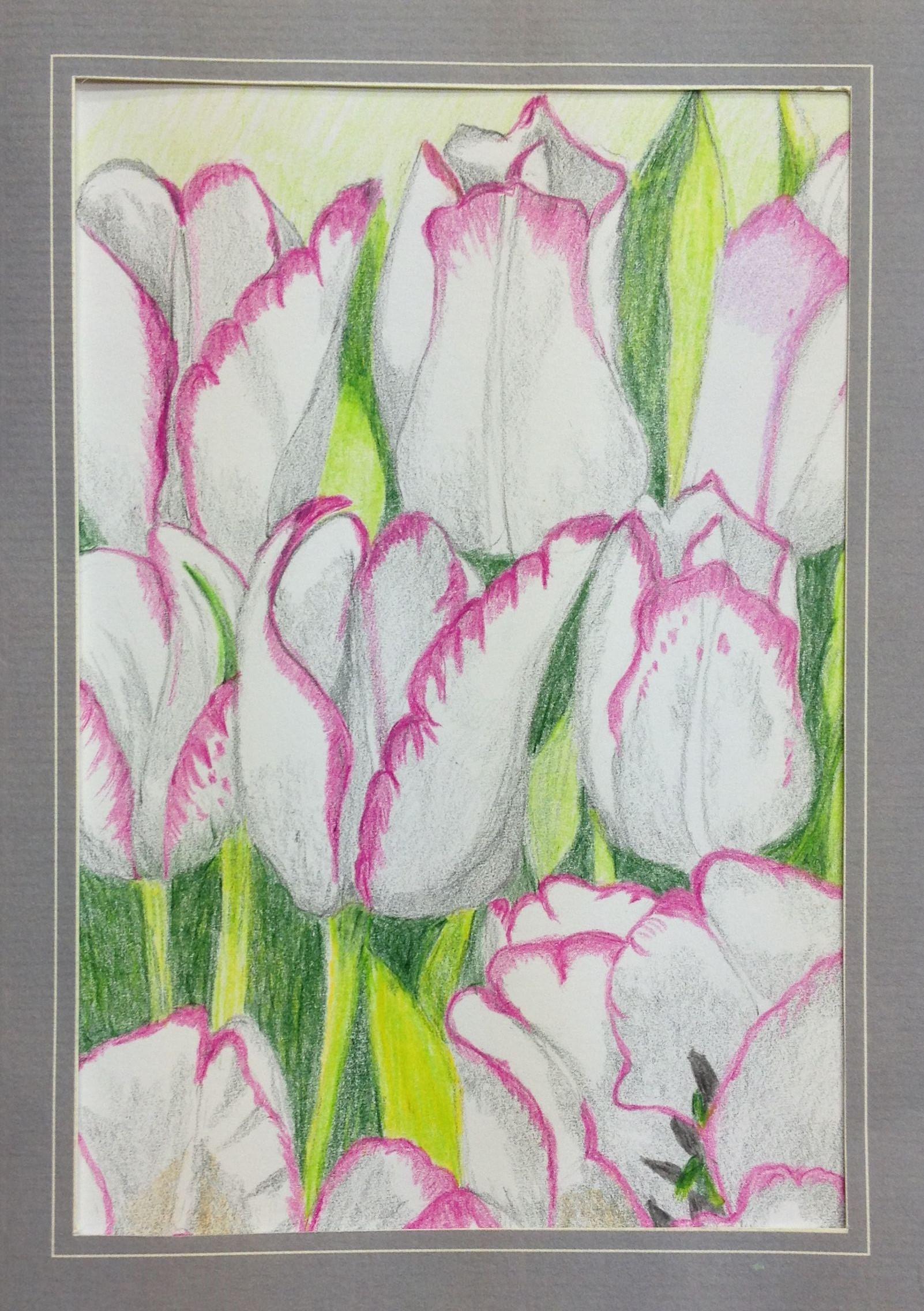 Kleurpotlood op papier, formaat 15 x 20 cm