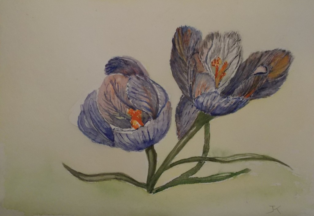 formaat 30 x 40 cm, aquarel