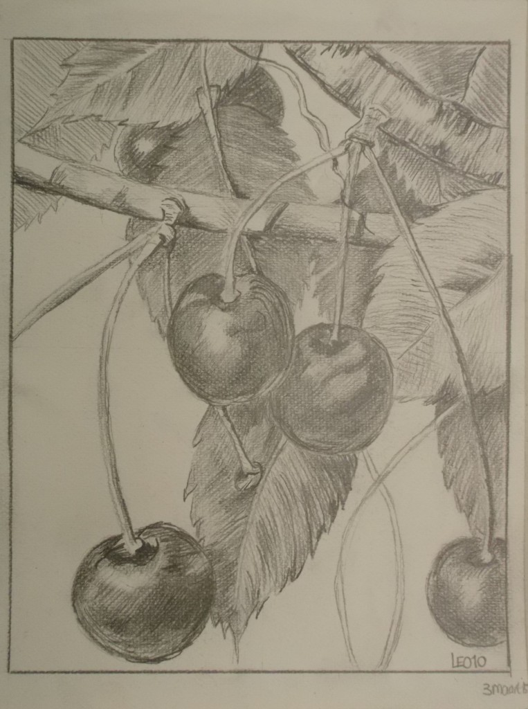 potloodtekening, 20 x 30 cm