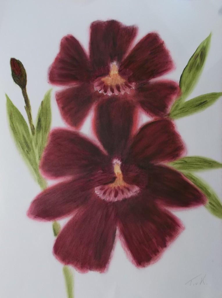 aquarel, 30 x 40 cm